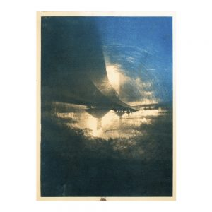 art,photographie, art contemporain, cyanotype, tanin