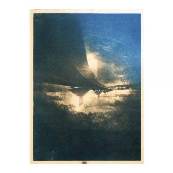 art,photographie, art contemporain, cyanotype, tanin