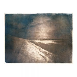 art, photographie, art contemporain, cyanotype, tanin