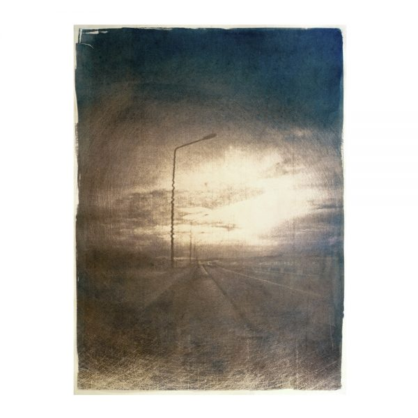 art, photographie, art contemporain, cyanotype, tanin