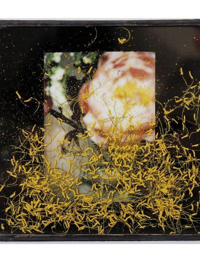 art floral, art contemporain, installation, exposition