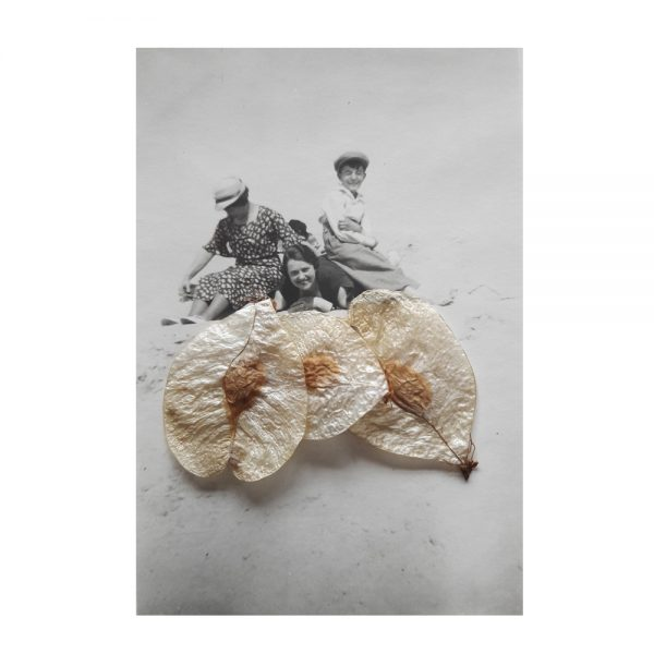tirage argentique vntage, photographie aninyme, art, galerie , aix en provence