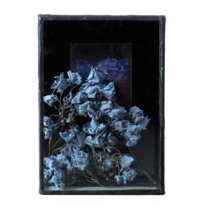 galerie d'art,art floral,art contemporain,installation,exposition,aix en provence