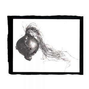 art , photographie, platine palladium, aix en provence