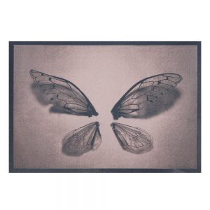 photographie contemporaine, cyanotype, exposition,galerie d'art , aix en provence