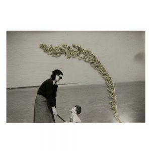photographie anonyme,galerie d'art, art contemporain, exposition, aix en provence
