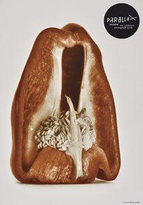 L'eden de denis photographies de Denis Brihat