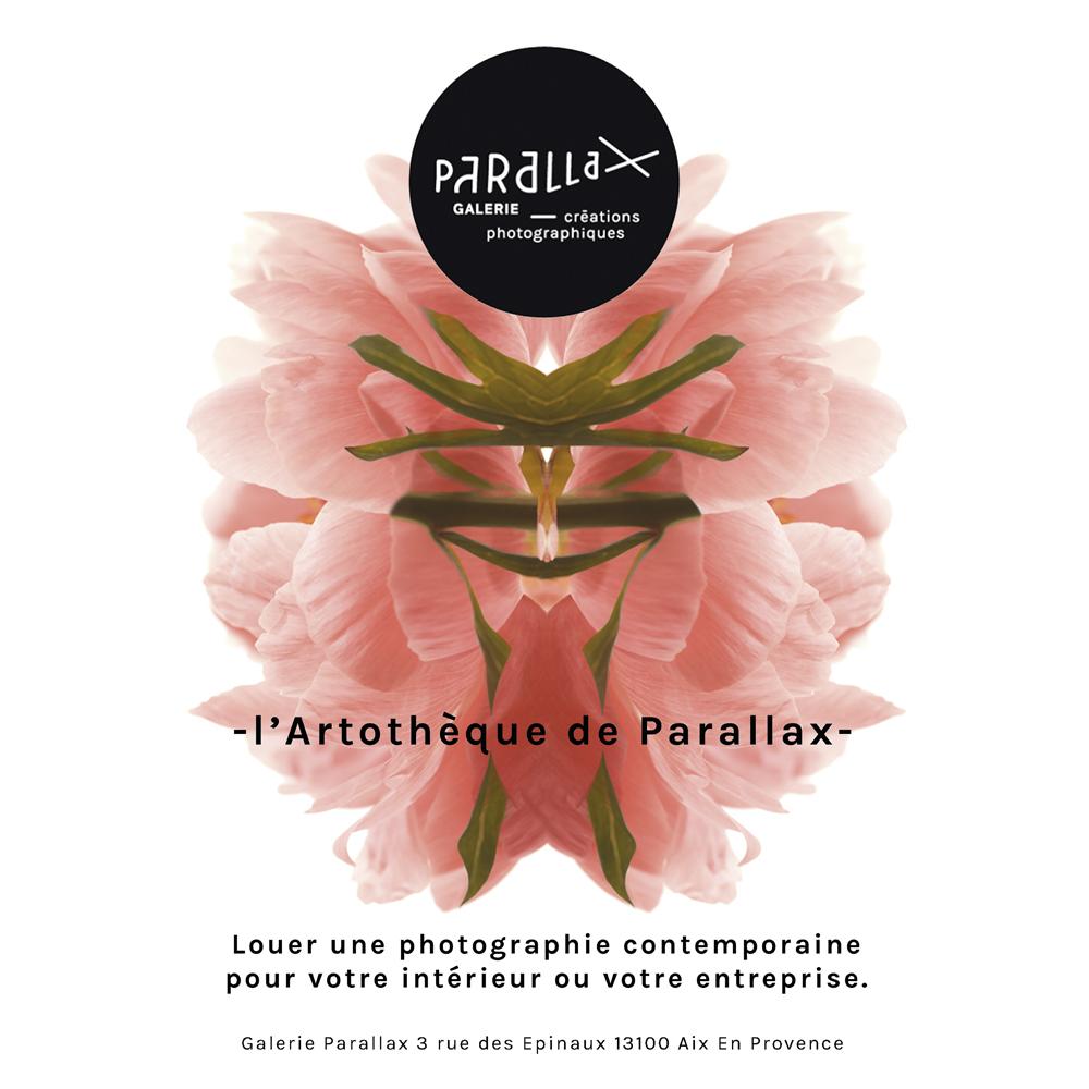 artotheque de Parallax
